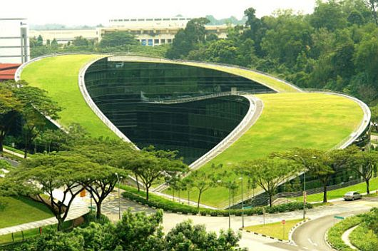 Green Roof of Nanyang Technological University
