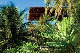 casa-tropical-4
