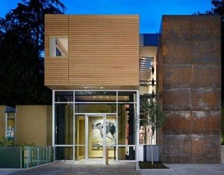 Contemporary Two-Storey House for the Art Lover 1