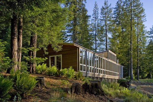 Modern Cottage Design Sebastopol Residence 2 Modern Cottage Design: Sebastopol Residence by Turnbull Griffin Haesloop Architects