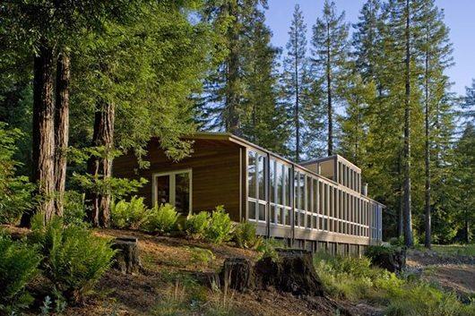 Modern Cottage Design, Sebastopol Residence 2