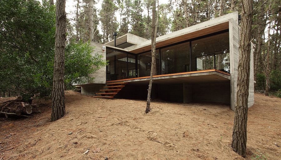 House in the Forest - BAK Architects