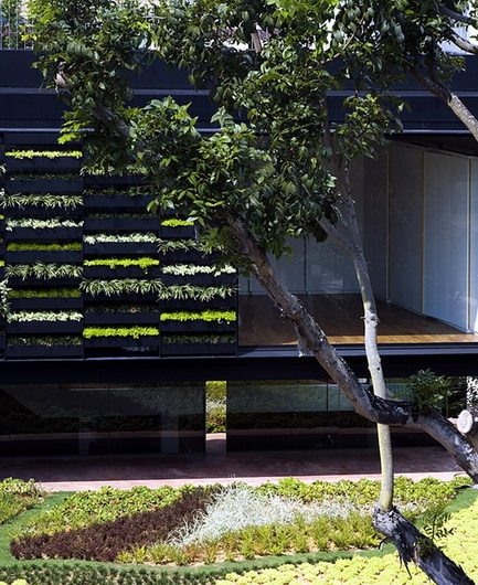 Maximum Garden House by Formwerkz coins the hybrid Garden Wall