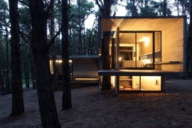 Forest JD House by BAK Architects in Argentina