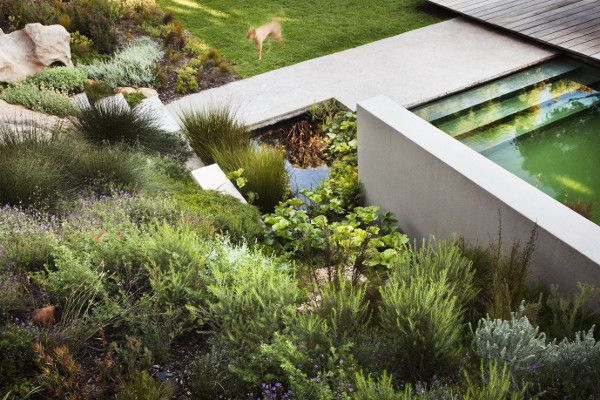 Garden Ideas Cape Town interesting garden ideas cape town designs and get inspired to