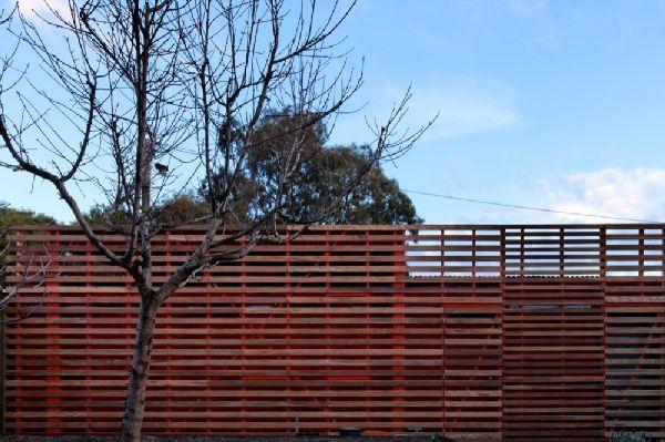 Mash House by Andrew Maynard Architects 19