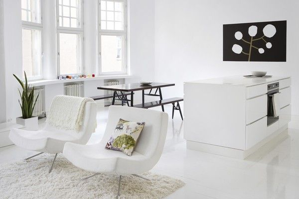 black and white open space apartment 2