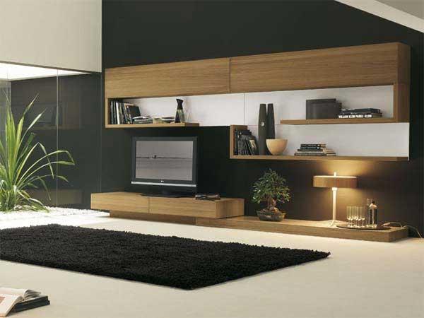 Living Room Styles 2011 (6)