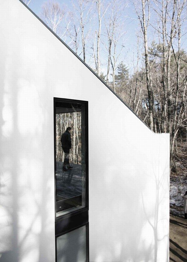 c8 Clear and subtle dream house in the forest