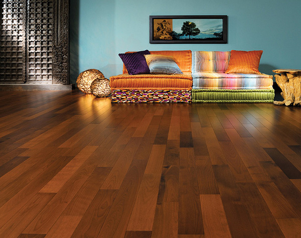 Hardwood Floors 6 Hardwood Floors: How to Care and What to Install!