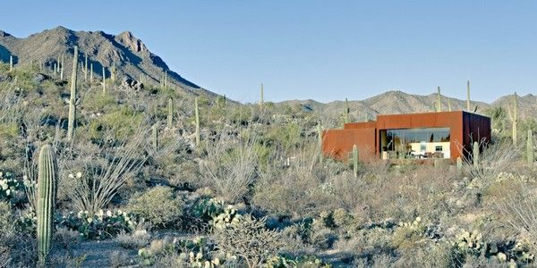 Dreamy Home in Arizona3