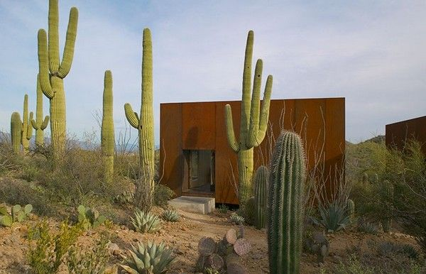 Dreamy Home in Arizona8