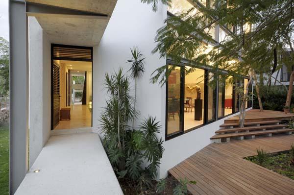 House-Among-Trees-7
