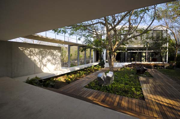 House Among Trees (8)