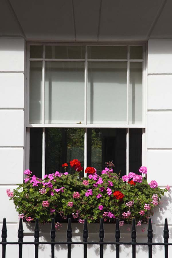 sash and case windows 2 Elegant sash and case windows for a chic home