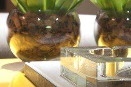 Breath-taking Interiors that Spell Luxury