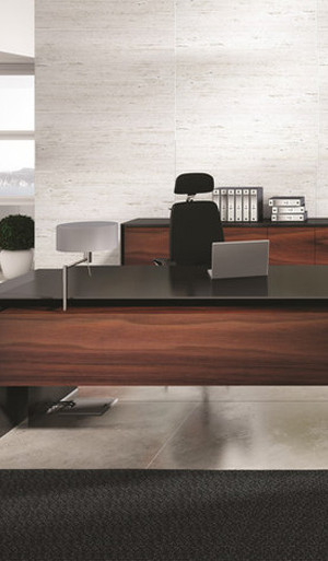 Massive Executive Desk