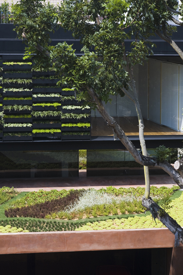 Maximum Garden House 2 Vertical gardens and inclined roof terraces: Maximum Garden House