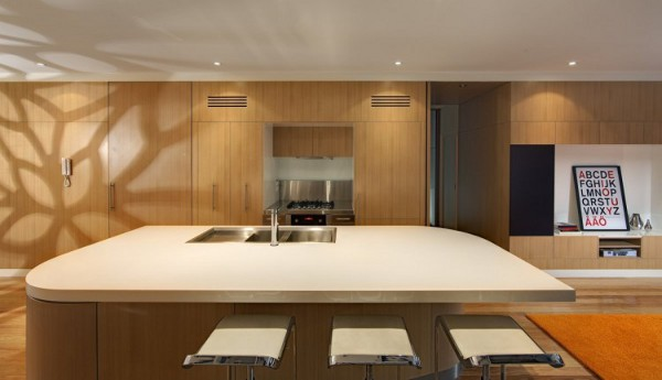 Curl Curl Beach House by CplusC Architects 18