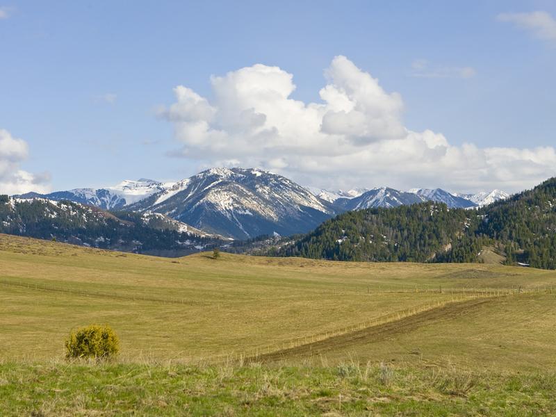Eagle-Ranch-141