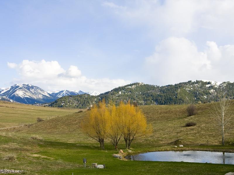 Eagle-Ranch-81