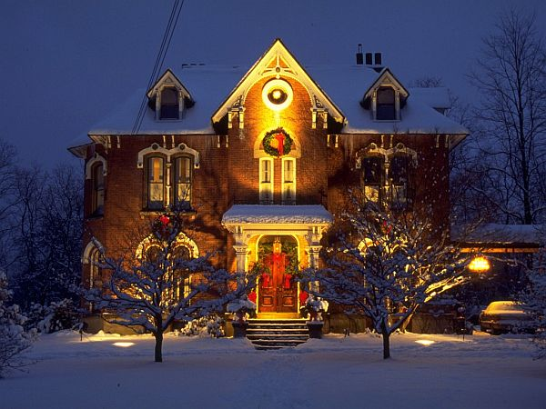 liked - Outdoor Christmas Decorations