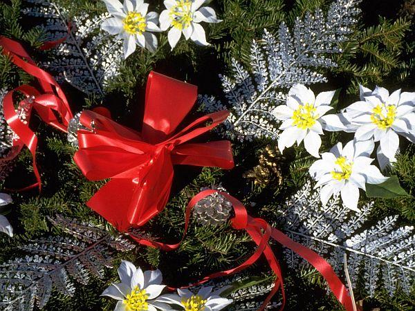 Christmas Tree Ornaments 5