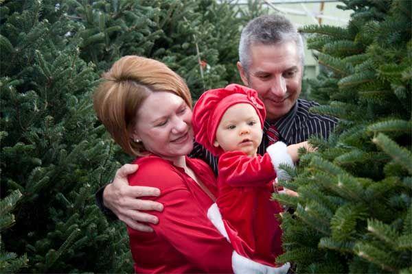 Natural vs Artificial Christmas Tree