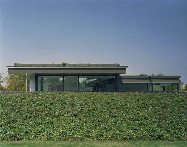 strip-garden-by-buildingstudio-architects (5)