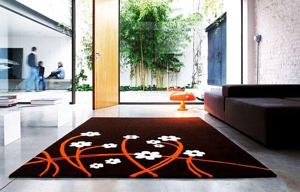 contemporary-livingroom-area-rug