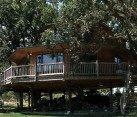 Largest Tree House in the World 1