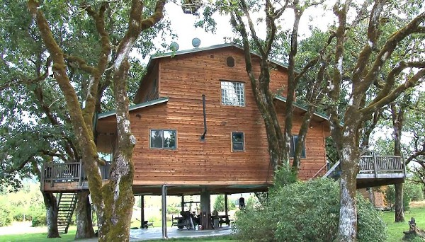 Largest Tree House in the World 3