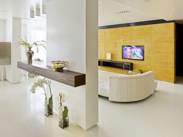 Luxurious Moscow Apartment 1