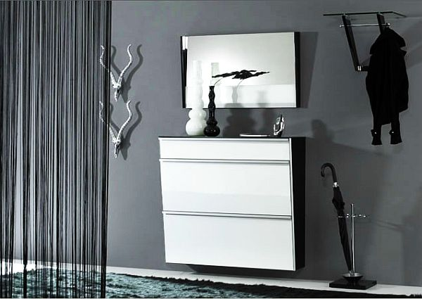 Glossy Shoe Cabinets