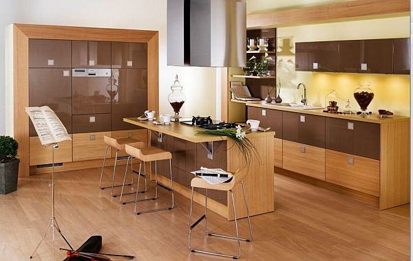 modern kitchen with wooden accents