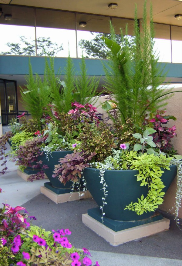 floral containers - Flower Garden Ideas In Pots