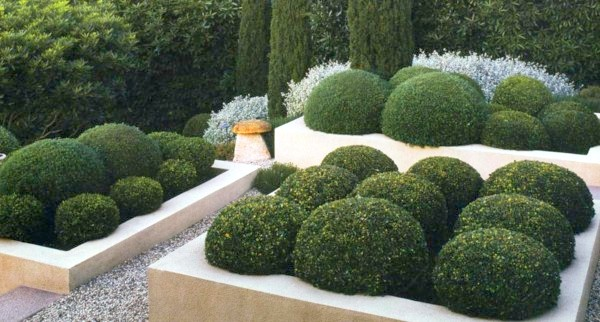 30 unique garden design ideas for Parterre de fleurs zen