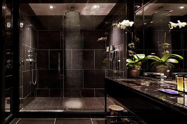 Hotel Spa Ultra Lux Shower Head