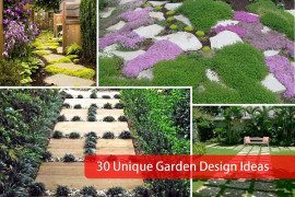 Lets Rock Fabulous Rock Backyard Design Concepts - Lets rock 20 fabulous rock garden design ideas