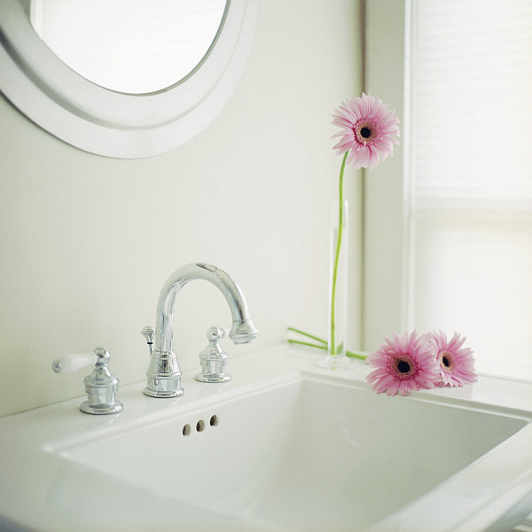vinegar bathroom cleaning tips Cleaning 101: New Approach to Bathroom Cleaning