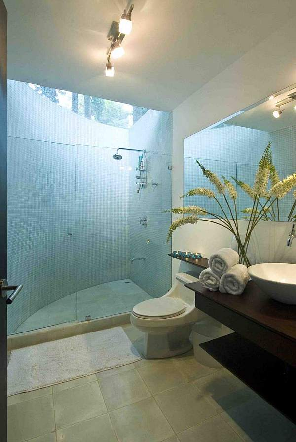 Bathroom cleaning for Clean bathroom designs