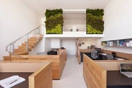 Buck O'Neill Builders Green Offices 2 - eco-friendly office design