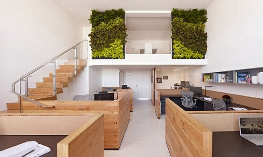 Office Space in San Francisco: Eco-friendly & Awe-Inspiring