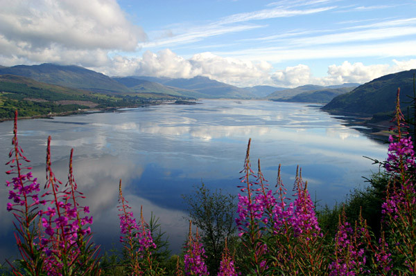 Country-Bungalow-Ireland-lake-view