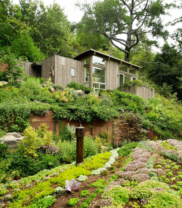 Mill Valley Cabins Feldman Architecture 1 Mill Valley Cabins Addition Set in a Picturesque Landscape