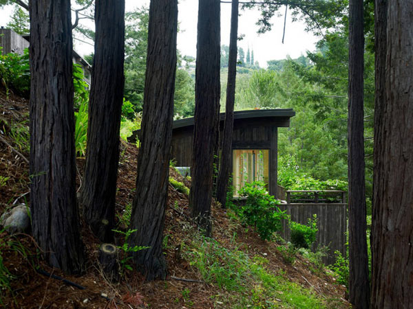 Mill Valley Cabins Feldman Architecture 2 Mill Valley Cabins Addition Set in a Picturesque Landscape