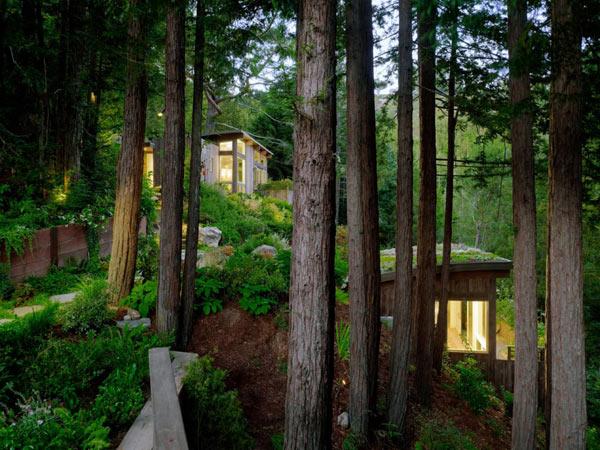 Mill-Valley-Cabins–Feldman-Architecture-(3)