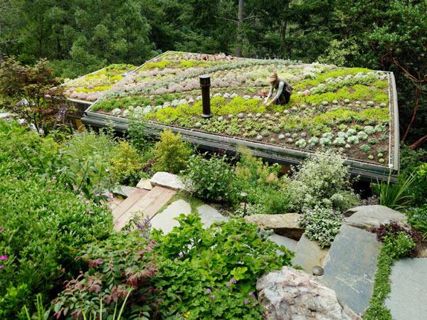 Mill-Valley-Cabins–Feldman-Architecture-(8)