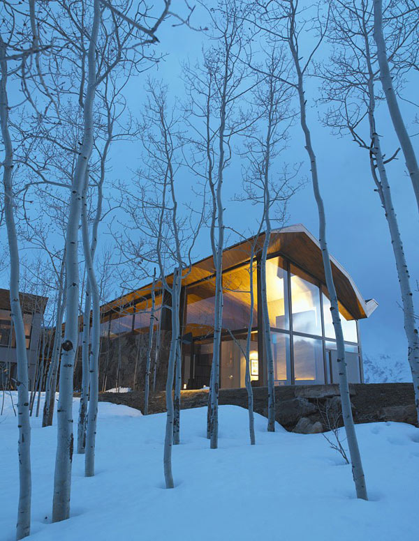 Wildcat-Ridge-Residence-by-Voorsanger-Architects4