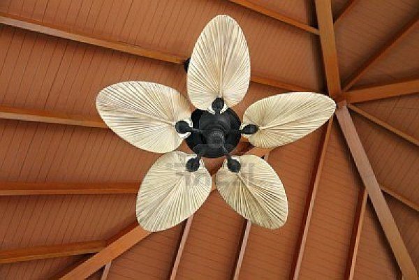Unique Celing Fans choosing a unique ceiling fan